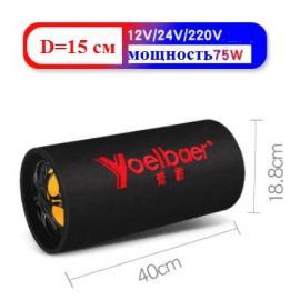 Активная колонка Bluetooth 75W