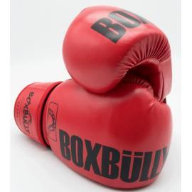 Боксерские перчатки Boxbully